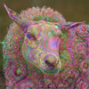 Psychedelic Sheep